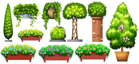 Set of decorative green plants on a white background Illustration
