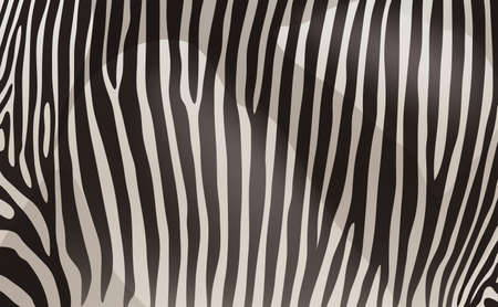 texturized: A zebra pattern design