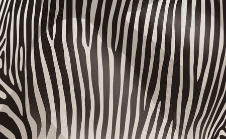 texturized: A zebra pattern design