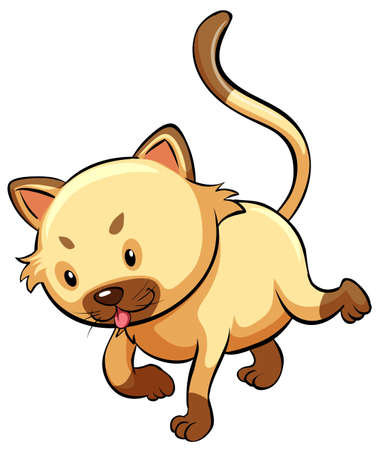 felidae: A cute cat on a white background Illustration