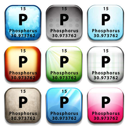 element: An icon showing the element Phosphorus on a white background Illustration
