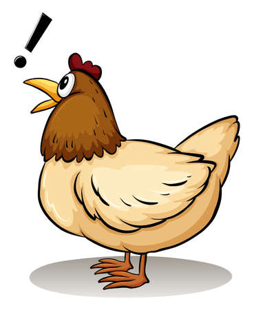 slang: A hen on a white background
