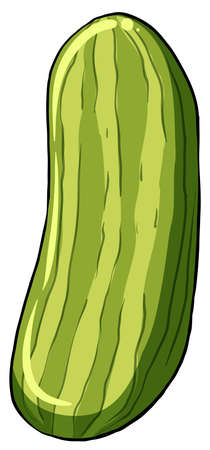 rosids: A cucumber on a white background
