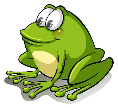 anura: Green frog on a white background Illustration
