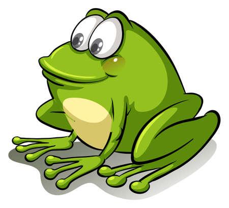 Green frog on a white background Illustration