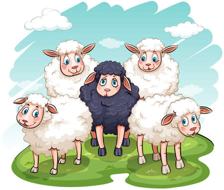 black sheep: Five sheeps on a white background