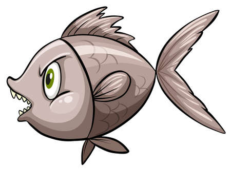 chordata: Angry looking fish on white Illustration