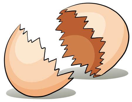 eggshell: A crack eggshell on a white background