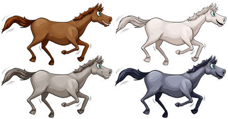 subspecies: Four wild horses on a white background Illustration
