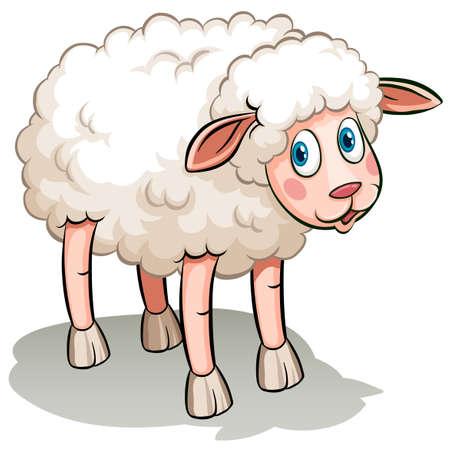 figurative: A black sheep idiom