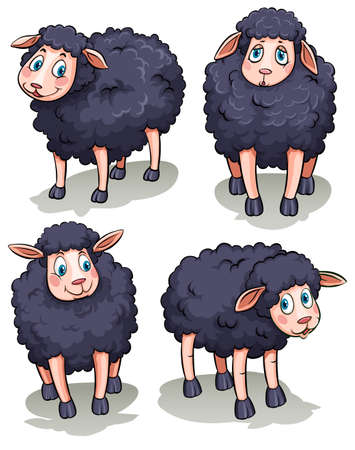 Four black sheeps on a white background  イラスト・ベクター素材