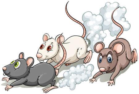 흰색 배경에 경주하는 세 마리의 쥐