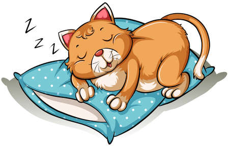 felidae: Cat taking a nap above the blue pillow on a white background Illustration