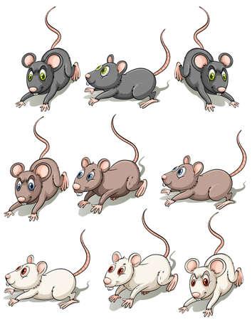 Gruppe von Mäusen auf weißem Hintergrund