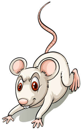 Angry small mouse on a white background Vector