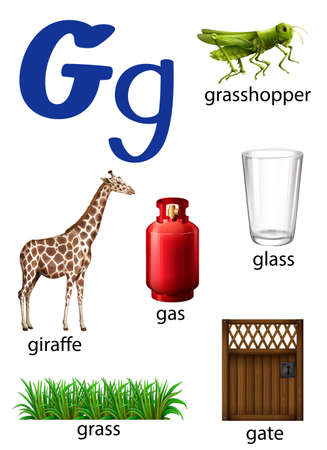 g giraffe: Things that start with the letter G on a white background Illustration