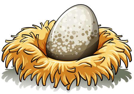 白い背景の上の大きな卵と巣  イラスト・ベクター素材