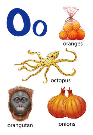 vowel: Things that start with the letter O on a white background