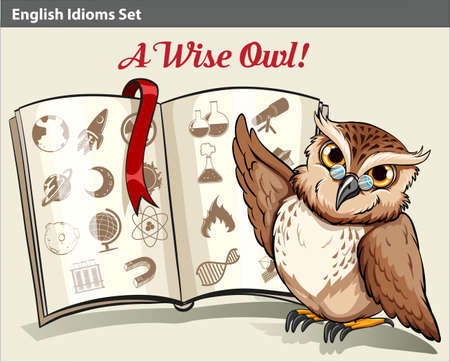 figurative: Poster with an English idiom with a wise owl