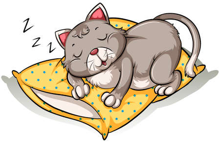 Cat taking a nap above the yellow pillow on a white background Vector