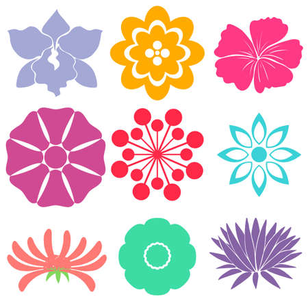 fuschia: Set of floral templates on a white background