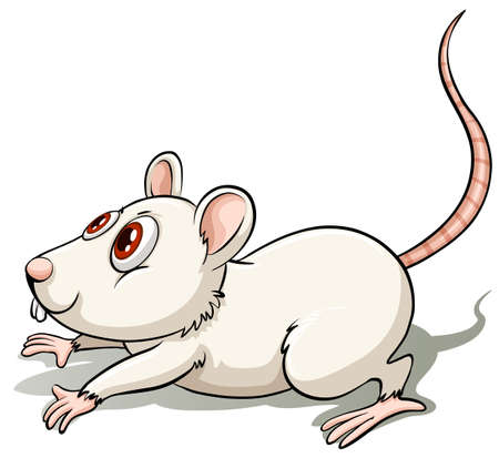 stench: White rat in a jumping position on a white background Illustration