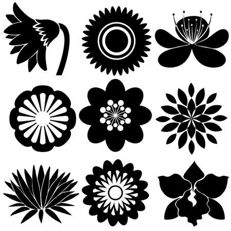 enhancement: Group of floral designs in black colors on a white background