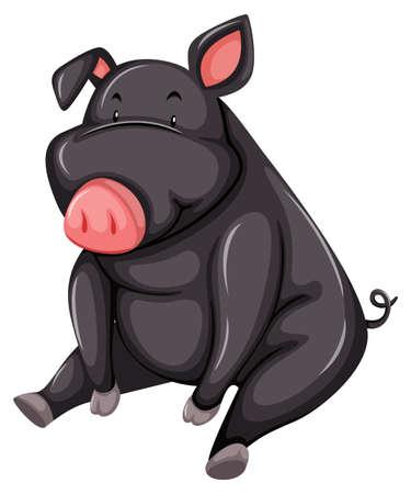 白い背景の上に座って灰色の脂肪の豚  イラスト・ベクター素材