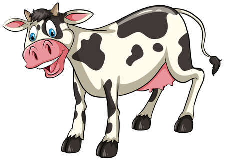 One smiling cow on a white background