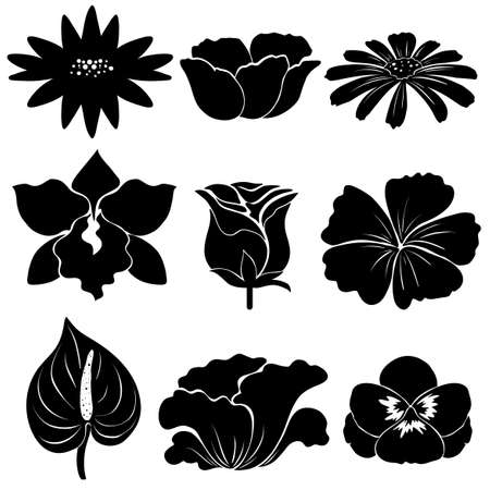 beautification: Set of black flower templates on a white background Illustration