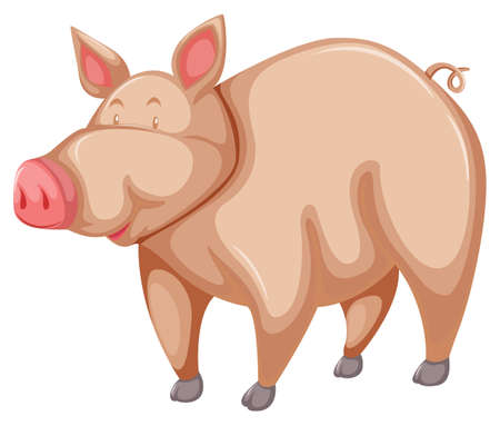 omnivores: One pink pig on a white background