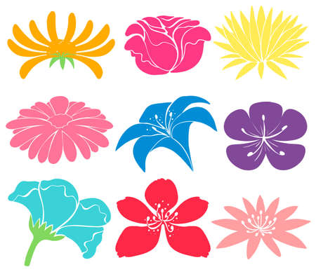 beautification: Set of colourful floral designs on a white background Illustration