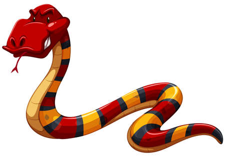 Colourful scary snake on a white background Illustration