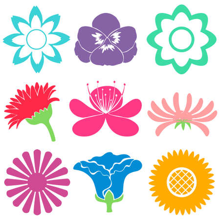 Group of colourful floral templates on a white background