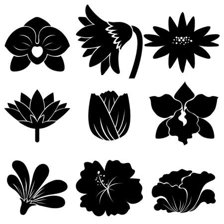 Set of black flower templates on a white background Illustration