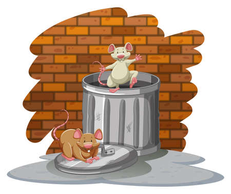 Rats playing with the trashbin near the wall on a white background
