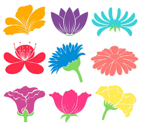 flower blooming: Colourful floral artworks on a white background