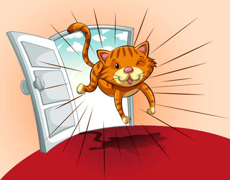 towards: Cat running towards the house