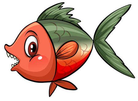 scales of fish: Sideview de un pez grande en un fondo blanco