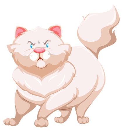hissing: Angry fat cat on a white background
