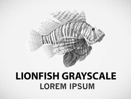 Pez león en escala de grises en un fondo blanco Ilustración de vector