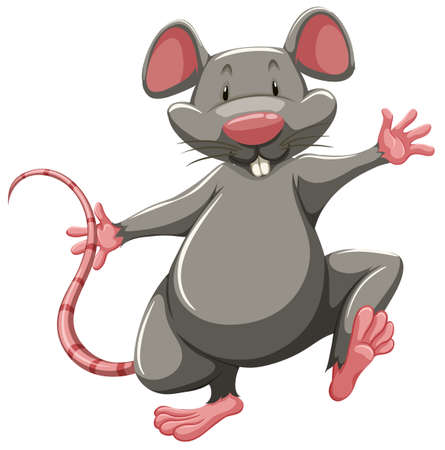 stink: One gray rat on a white background Illustration