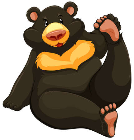 stocky: One fat bear on a white background