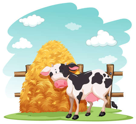 Cow and a pile of haystack near the wooden fence on a white background