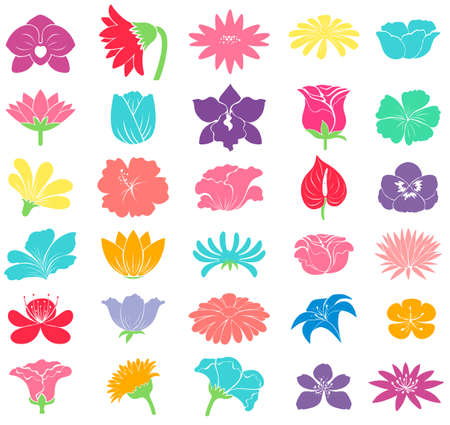 flowering plant: Different colorful floral designs on a white background