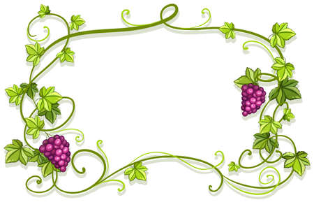 purple grapes: White card with plant and grapes frame