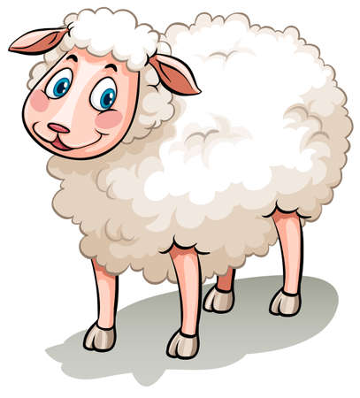 sheep clipart: Flashcard of a smiling white sheep
