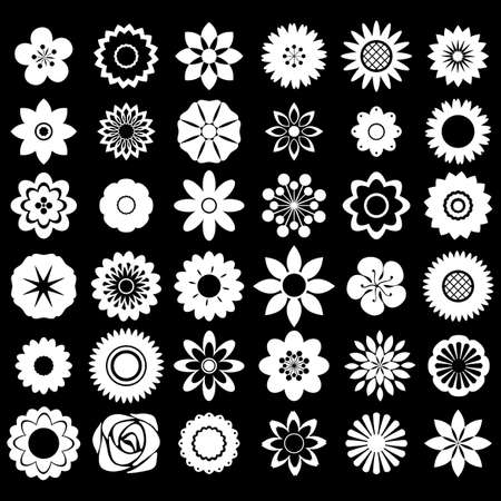 small group of objects: Flower design patterns on black background
