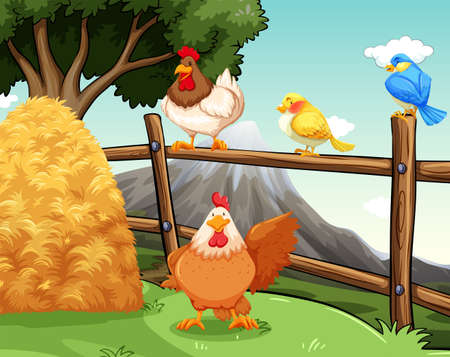 poultry animals: Farm animals near the hay and fence Illustration