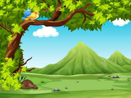 birds scenery: Open feild with greenery surronding Illustration